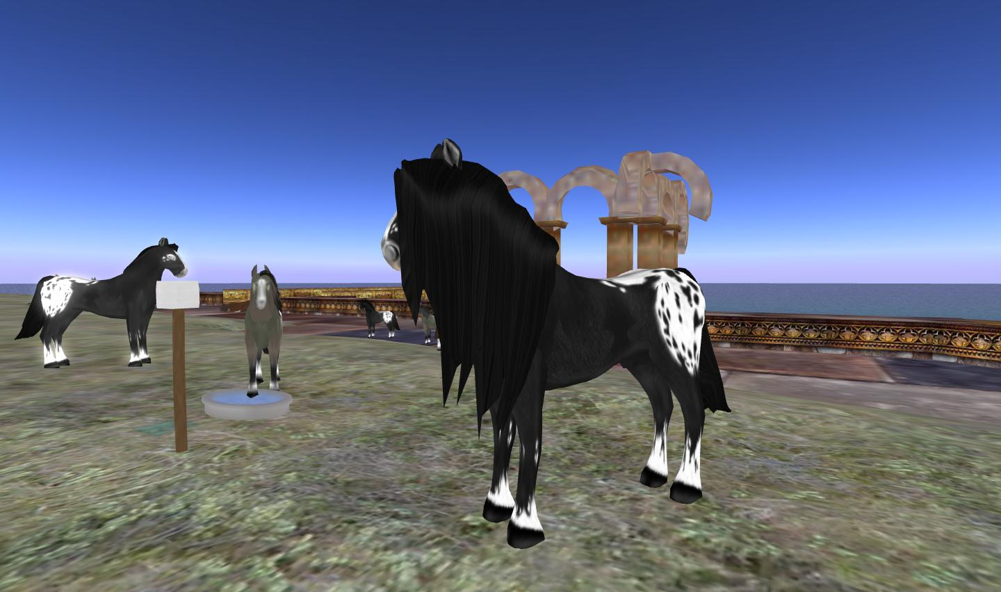 The discovery of fabio horse the amazing something for Where to go horseback riding near me